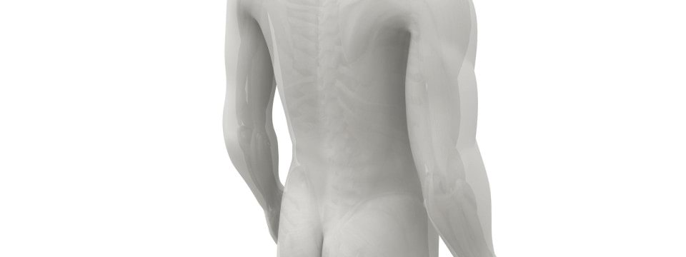 Back Injury - Transverse Myelitis