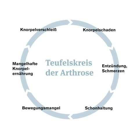 Teufelskreis Der Arthrose