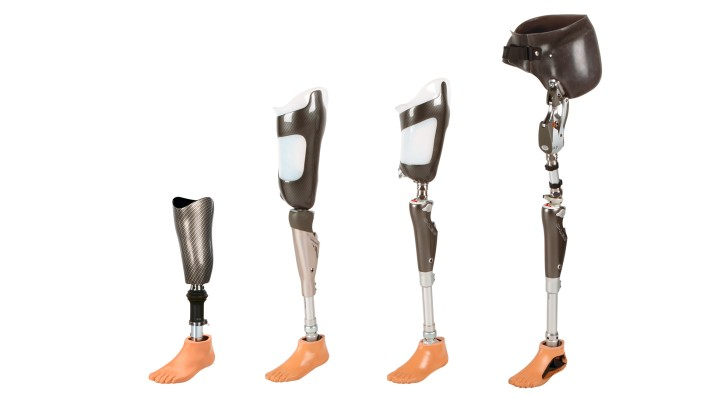 Overview of lower limb amputation levels