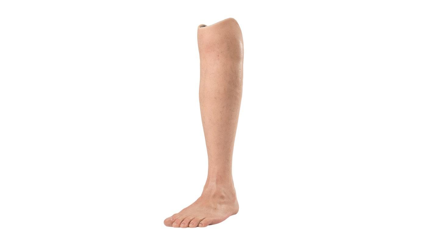 Lower limb prosthetics system overview | Ottobock AU
