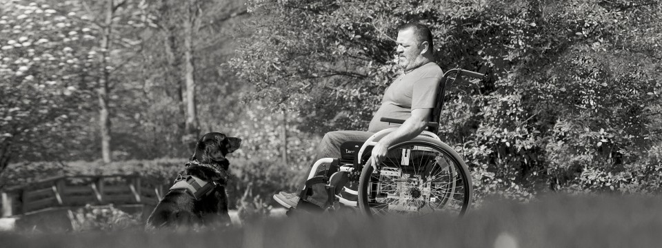 Start wheelchair user walking his dog