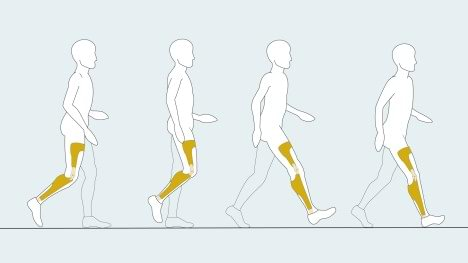 Last phases of E-Mag gait cycle.