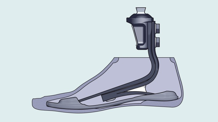 Drawing of a Triton prosthetic foot inside the footshell