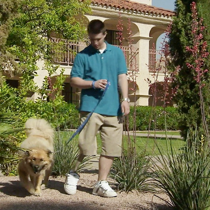 Chandler walking a dog on a leash.